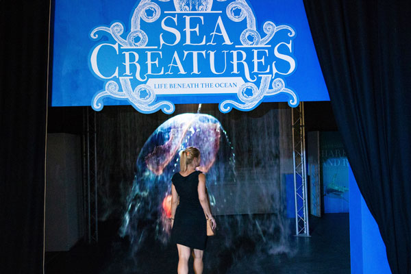 In pictures: Underwater delights at RHH's 'Sea Creatures' exhibition