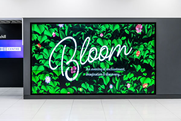 London's QEII Centre in Bloom for floral showcase